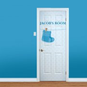 Baby Boys Custom Bedroom Door
