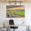 Ballymena, Showgrounds Football Ground Wall Sticker