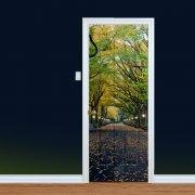 Central Park Printed Door Art