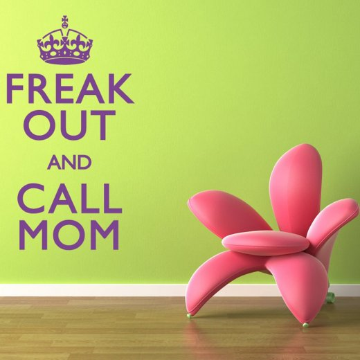 Freak Out  And Call Mom Wall Sticker