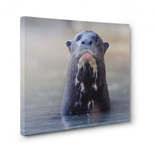 Wall Chimp Giant Otter Canvas Print