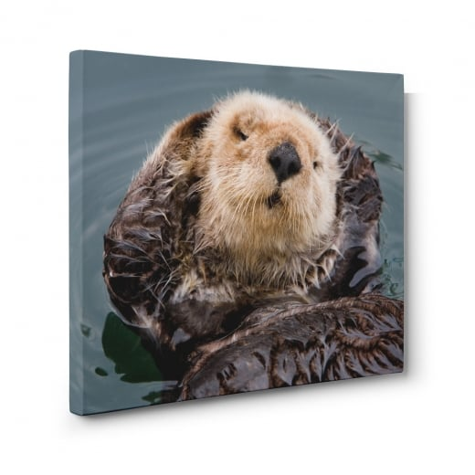 Wall Chimp Sea Otter Canvas Print