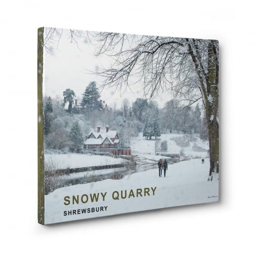 Wall Chimp Snowy Quarry - Shrewsbury Canvas Print