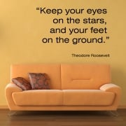 Theodore Roosevelt Motivational Quote Wall Sticker